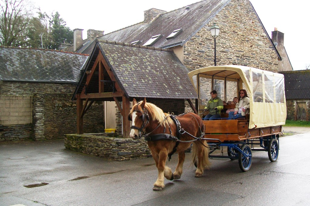 Transport scolaire à La Chapelle Gaceline
