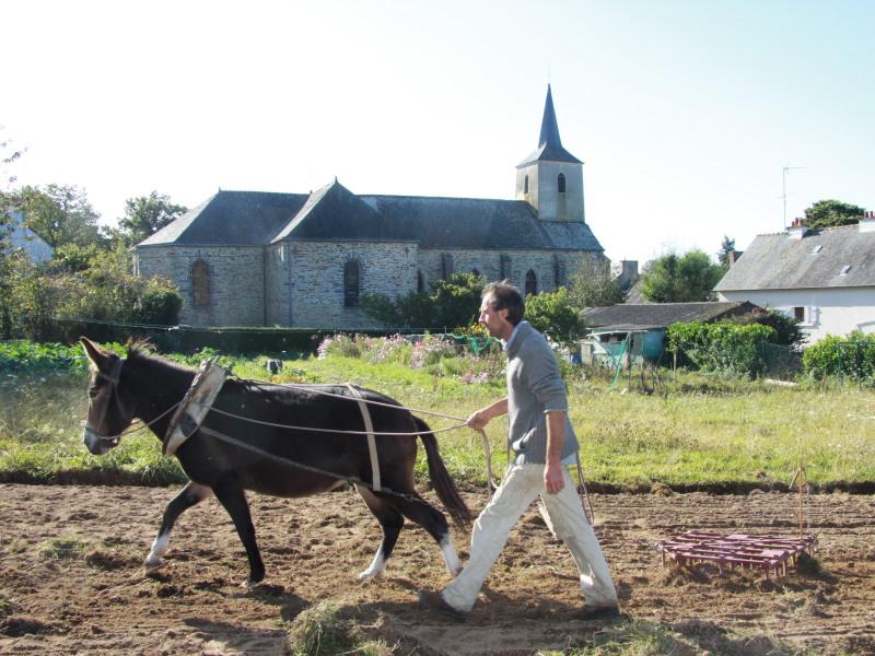 Équi-cité 2012, La Chapelle Gaceline
