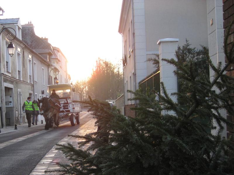 Collecte de sapins de Noël - St Prix (95) 2010