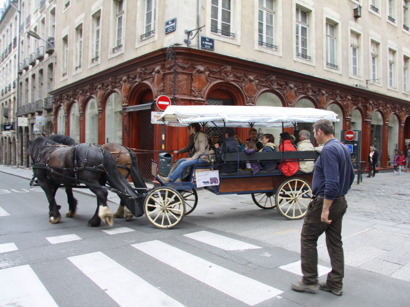 Visite du centre historique de la ville de Rennes - Prestataire Équi-services