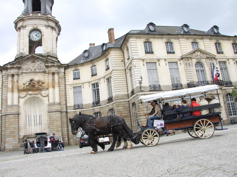 Visite du centre historique de la ville de Rennes - Prestataire Equi-services