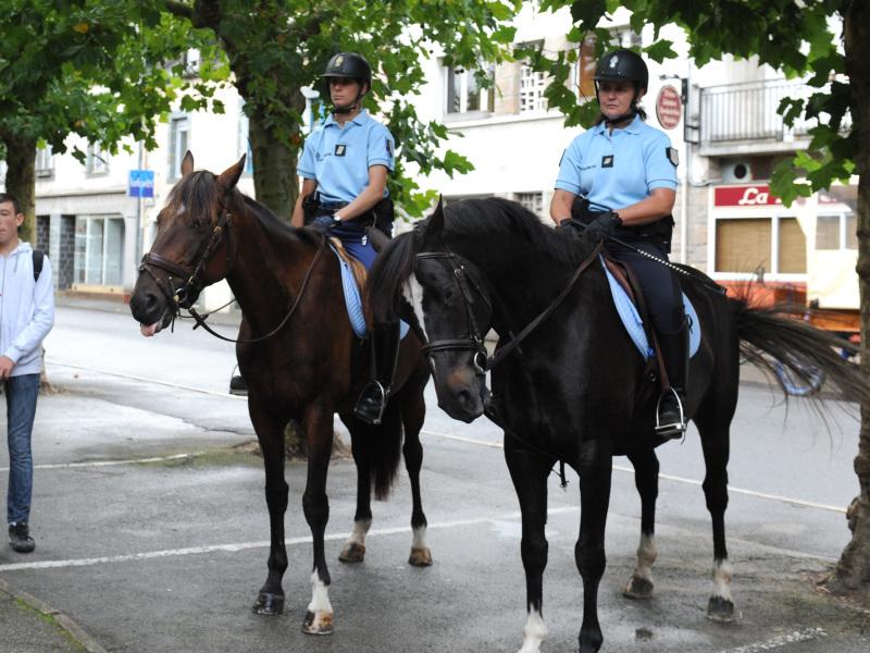 Équi-cité 2011, La Gacilly - Brigade montée