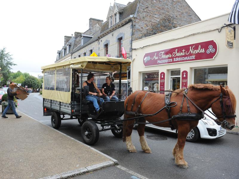 Démonstration de collecte de cartons - Équi-cité 2011, La Gacilly