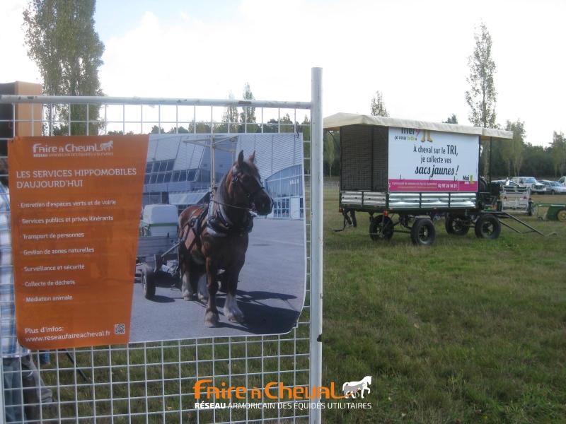 Affiche du réseau Faire à cheval devant le pôle cheval territorial de la fête
