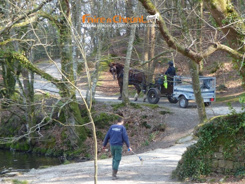 Inspection et entretien des chemins par l'équipe attelage