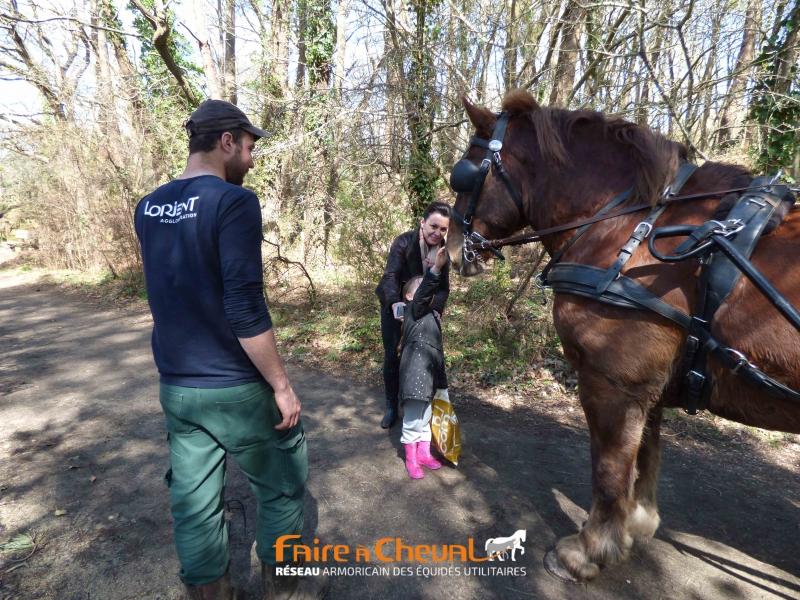 La présence du cheval favorise les relations avec les usagers du parc