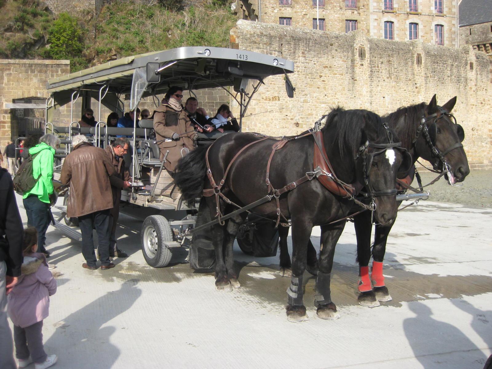 Maringottes du Mont St Michel