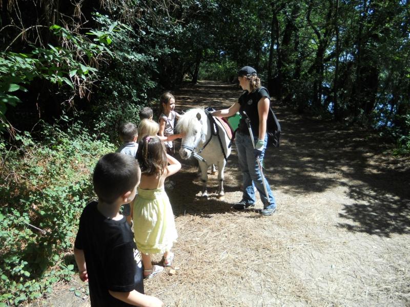 Poney participant à la sensibilisation du jeune public sur le respect du parc