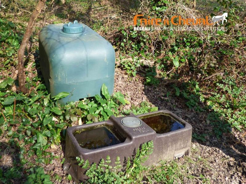 Le système d'abreuvoir permet de conserver une eau propre avec un minimum d'intervention