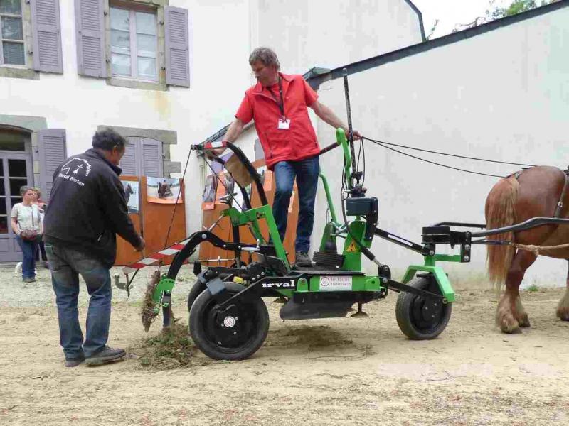 Démonstration de l'Equistabnet pour du désherbage mécanique avec le cheval