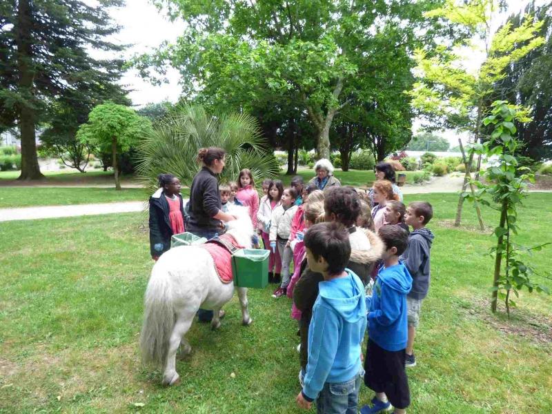 Consignes avant le départ pour l'entretien du parc avec Boris le poney de Lorient Agglomération