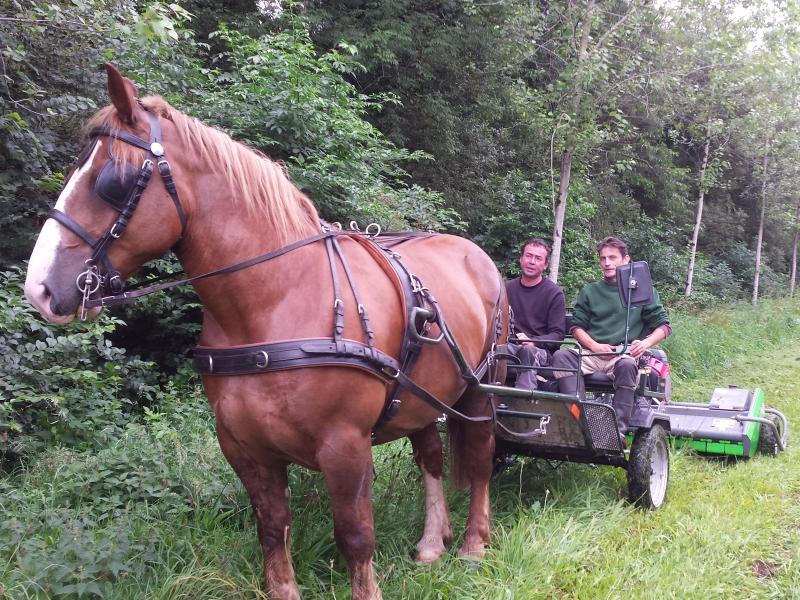 Utilisation du broyeur thermique avec le cheval