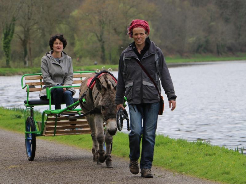 Balade attelée par Copains-Coop'ânes