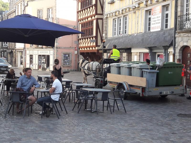 Le cheval diminue les nuisances associées à la collecte en centre ville
