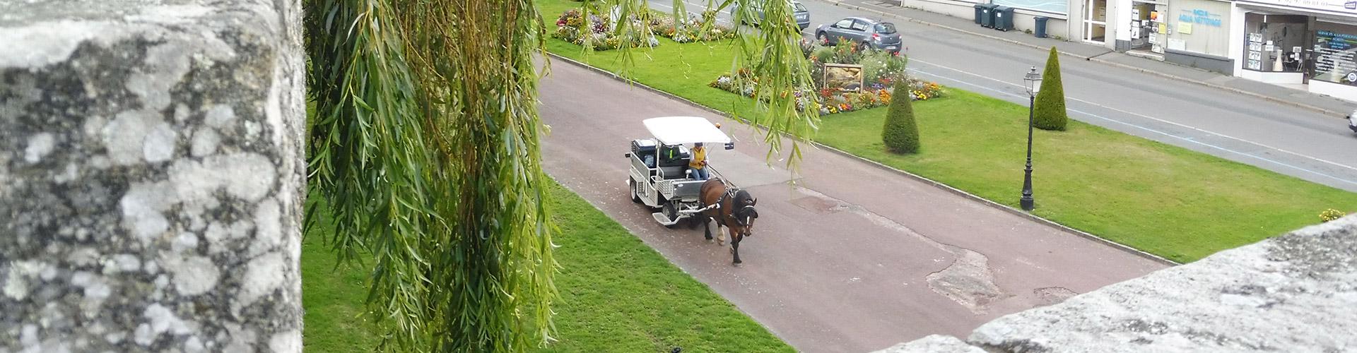 Bienvenue sur le réseau Faire à cheval