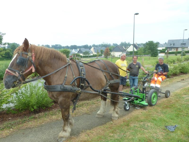 La désherbeuse livrée par Pierre Avril à l'équipe en charge du cheval