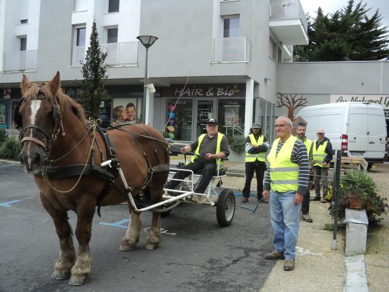 L'arrosage avec l'équipe de bénévoles et Gérard Bécel